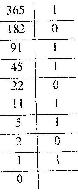 Перевод в двоичную систему счисления
