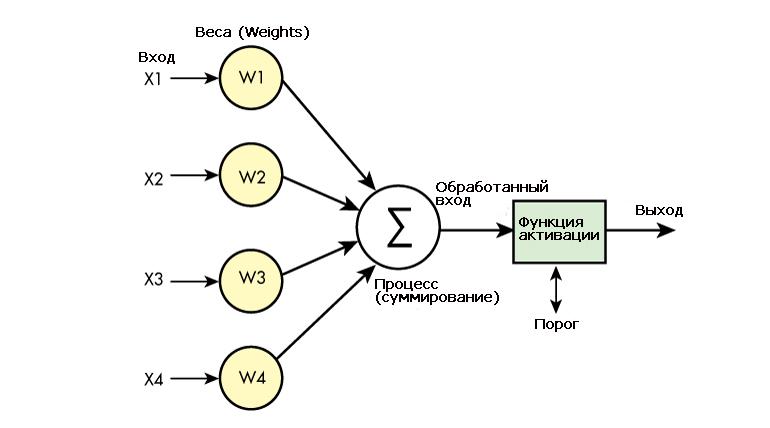 Ключевые элементы искусственного нейронного узла