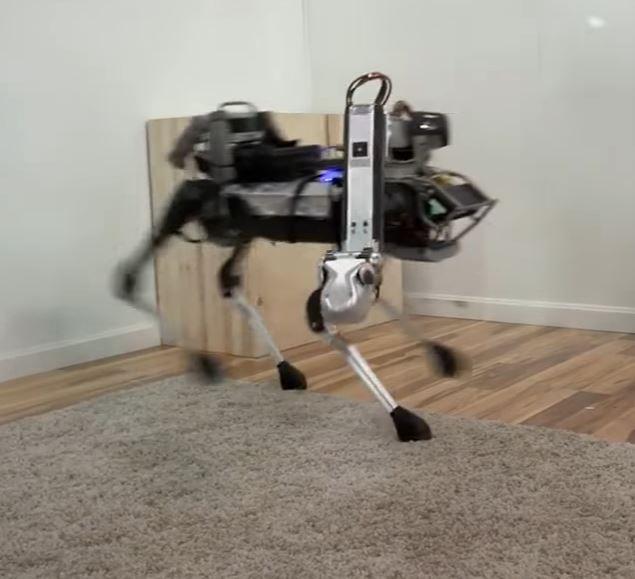 Роботы заменяют домашних животных