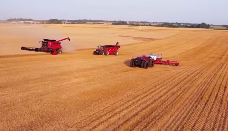 Три основных пути развития интернет вещей IoT в сельском хозяйстве