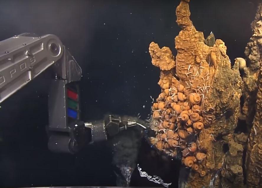 Отбор проб экосистемы океана с помощью современных роботов
