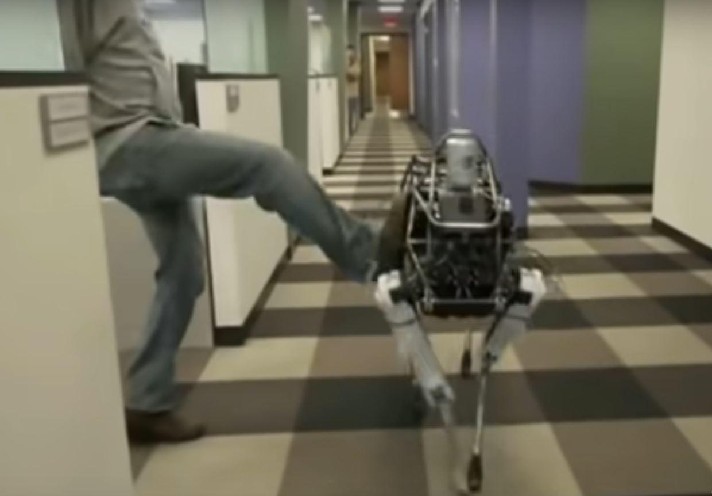 Кто управляет роботами? Представляем директора по робототехнике (CRO)