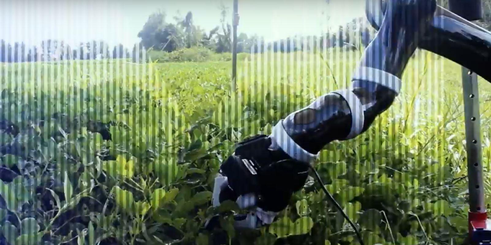Теперь роботы способны самообучаться и сами собирать необходимые детали из подручных материалов