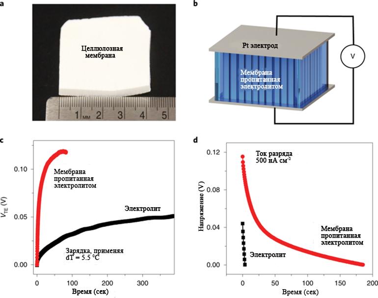 Характеристики термической зарядки электролитно-инфильтрованной целлюлозной мембраны