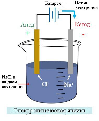 Структура электролитической ячейки